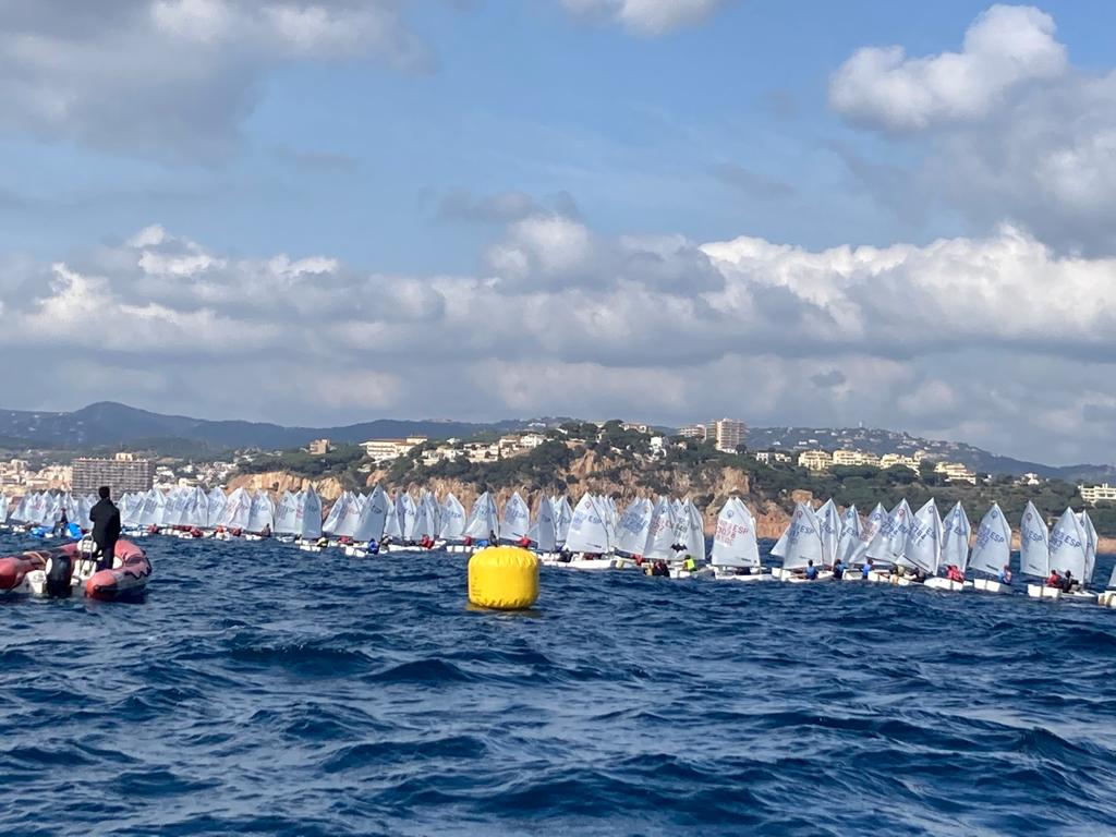 optimist, Guixols Cup, vela